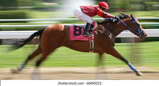 """SARATOGA SPRINGS, NY - AUG 27: Jockey James Wilsey and """"Ginowillietwoshoes"""" compete in a maiden race at Saratoga Race Course on Aug 27, 2010 in Saratoga Springs, NY."""