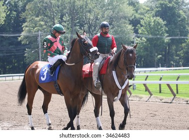 SARATOGA SPRINGS, NY- AUGUST 1: Jamie Theriot aboard Cat in the Sky in the post parade for the 2nd race at Saratoga Race Track - August 1, 2009 in Saratoga Springs, NY.