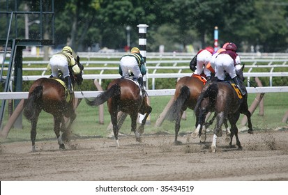 SARATOGA SPRINGS, NY- AUGUST 15: The Field is off and running in the 4th race at Saratoga Race Track, August 15, 2009 in Saratoga Springs, NY.