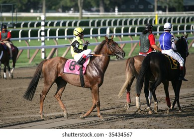 """SARATOGA SPRINGS, NY- AUGUST 15: """"Quijano (GER)"""" with A. Starke aboard in the Post Parade for the Sword Dancer Stakes at Saratoga Race Track, August 15, 2009 in Saratoga Springs, NY."""