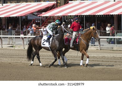 SARATOGA SPRINGS, NY - August 29, 2015: #2 Hundred Years ridden by Ricardo Santana, Jr before the 2nd race on Travers Day at Historic Saratoga Race Course on August 29, 2015 Saratoga Springs, New York