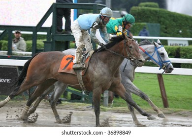 """SARATOGA SPRINGS, NY- AUGUST 29: """"Cops fever"""" with Kent Desormeaux aboard finishes the 2nd race at Saratoga Race Track, August 29, 2009 in Saratoga Springs, NY."""