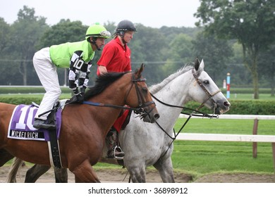 "SARATOGA SPRINGS, NY- AUGUST 29:  ""Wicked Rich"" with Robby Albarado aboard in the post parade for the LURE Stakes at Saratoga Race Track, August 29, 2009 in Saratoga Springs, NY."