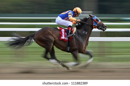 """SARATOGA SPRINGS - SEPT 1: Jockey Joel Rosario pilots """"Isthmus"""" to a 2nd place finish in an allowance race  at Saratoga Race Course on September 1, 2012 in Saratoga Springs, NY."""