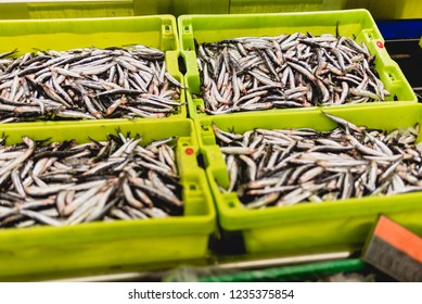 sardines fish in a box with ice in a fishmonger.