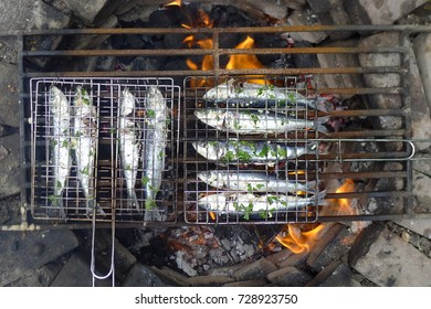 sardines grilled on open fire in the garden