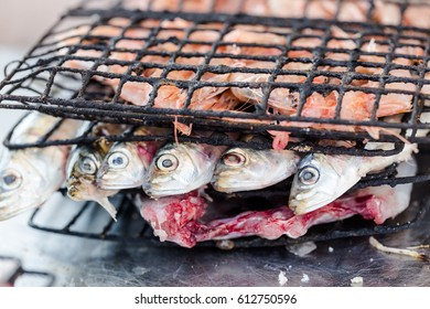 Sardines and prawns with sole prepared for grilling in bistro in Essaouira fishing port. Close up horizontal crop