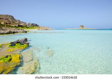 Sardinia Coast- Stintino - La Pelosa