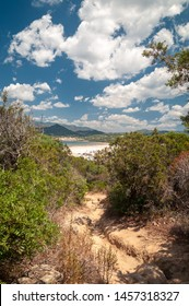 Sardinia, Villasimius. Path through the vegetation to go to the Torre Giunco beach from the tower on the promontory. Trekking in nature