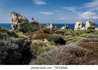 Sardinian Wilderness, Capo Testa, Sardinia, Italy