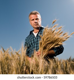 Satisfied mature farmer looking at camera with a bunch of ripe wheat after a working day