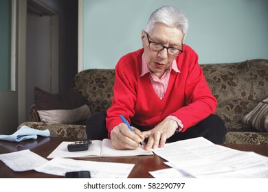 Satisfied senior old woman calculating her expenses for the month, looking at her bills