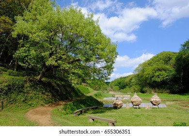 Satoyama landscape in spring in Japan