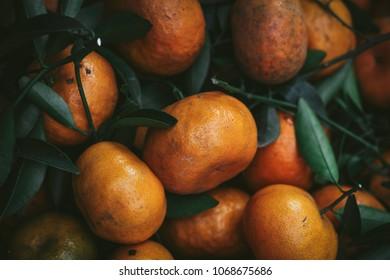 Satsuma oranges in a market