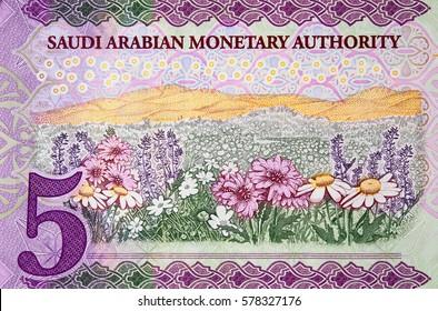 Saudi Arabia 5 riyal (2016) banknote fragment, flower meadow, Saudi Arabian money close up.