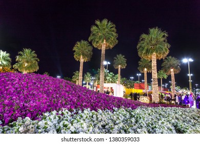 Saudi Yanbu March 29 2019 Yanbu flower show in the night Yanbu Flower Festival is one of the biggest festivals in Saudi Arabia. In the 2019 edition of it they managed to make the largest carpet of flo