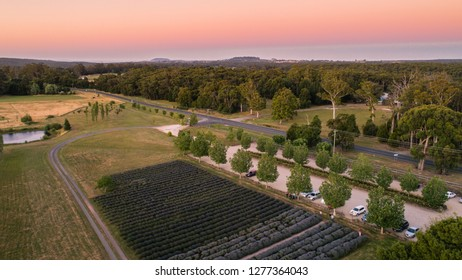 Sault Restaurant, Daylesford, Victoria, Australia: Beautiful lavender farm with lovely house at Sunset, 06/01/2019, drone view aerial