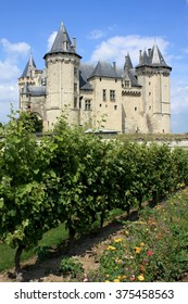 Saumur, France. 02.11.2016. The Saumur Castle, in the Loire valley  region, famous for its wines and ancient royal castles. Some vineyards of white wine in the foreground.