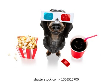 sausage dachshund dog going to the movies with soda and glasses and popcorn and tickets, isolated on white background and 3d glases