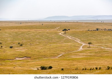 Savanna landscape with a dirt road in Africa
