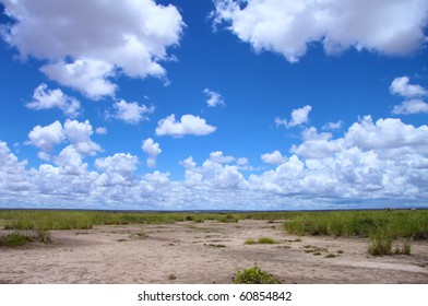 Savanna landscape under a blue cloudy sky