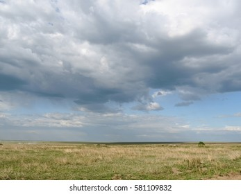 Savanna plain with acacia trees against storm cloud sky background. Serengeti National Park, Tanzania, Africa.