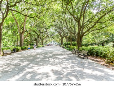 SAVANNAH, GEORGIA - June 7, 2014:  Savannah is the oldest city in Georgia. From the historic architecture and parks to the beaches of Tybee, Savannah attracts millions of visitors annually.