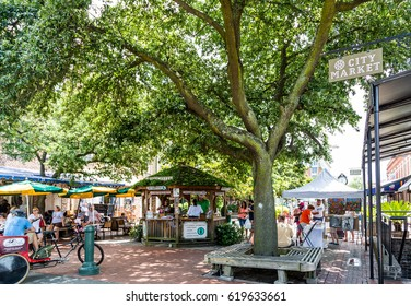 SAVANNAH, GEORGIA - June 7, 2014: Located midway between two other Savannah landmarks, Forsyth Park and River Street, City Park is a great meeting place for tourists and locals alike.