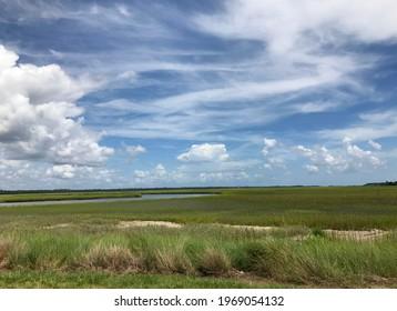 Savannah, Georgia, USA - August 2018 - Nature views, panorama near Savannah