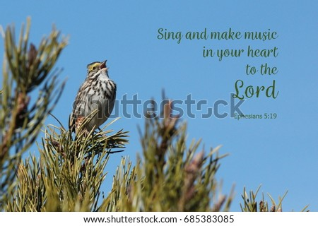 Savannah Sparrow Singing Bible Verse Stock Photo Edit Now