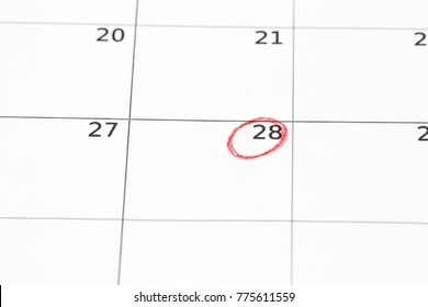 Save the date written on the calendar -  28, circled in red marker.
