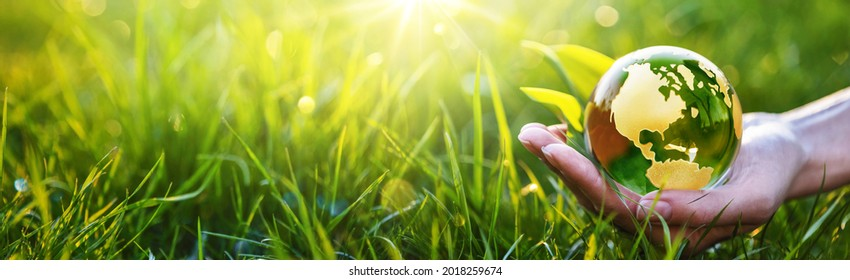 Save Earth. Environment Green Concept