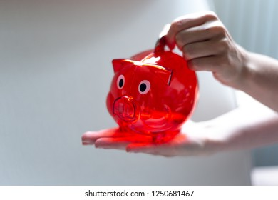 Save money with a red piggy Bank