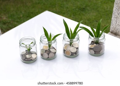 Save money with stack money coin for growing your business