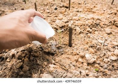 Save Plant concept