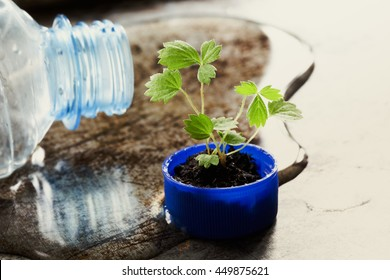 Save water eco design concept photography. Bottleneck and green sprout growing  in bottle cap. macro view pattern, texture leaves. Puddle spilled liquid Aged rusty metal background, soft focus