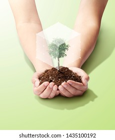 save world and innovation concept, boy  holding small plant or tree sapling are growing up from soil on palm with connection line and glove around