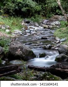 Savegre river flow, San Gerardo de Dota, Costa Rica. Calm stream.