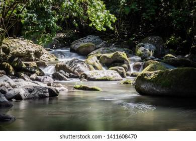 Savegre river flow, San Gerardo de Dota, Costa Rica. Calm stream. yoga concept.