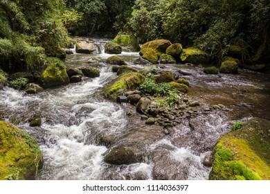 Savegre River, los Quetzales National Park San Gerardo de Dota, Costa Rica