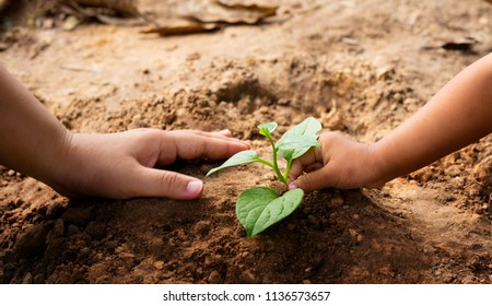 Saving earth concept, Kid and mother hand planting together