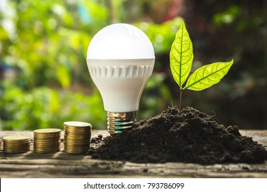 Saving energy concept with lightbulb and coin.
