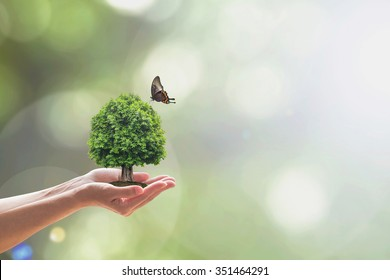 Saving green environment, harmony living in nature and ecosystem conservation campaign concept