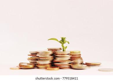 Saving and growing Coins for saving
