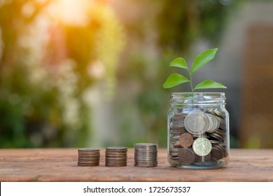 Saving money by hand puting coins in jug glass on nature background.