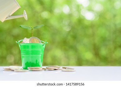 Saving money for future growth concept :  Green sprout on bucket full of coins, investor pours water from a watering can, depicts taking care of personal asset or portfolio for retirement in late life