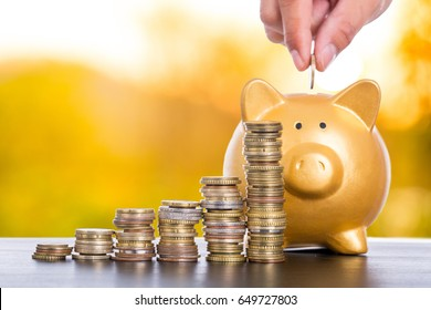 Saving money for investment concept for growing financial.