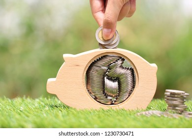 Saving money for prepare in future concept, Woman hand putting a coin into piggy bank wood on natural green background