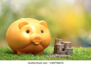 Saving money for prepare in future and investment concept, Golden piggy and stack of coins money on natural green background