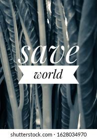 fotos imagenes y otros productos fotograficos de stock sobre save